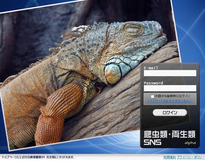 爬虫類SNS(ペット)